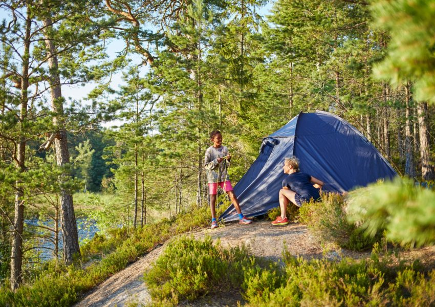 Top 5 Tips for New Campers